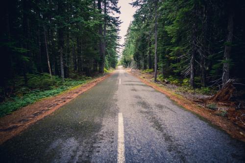 Pioneer Woman's Grave Road