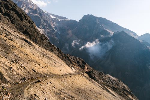 Alpaca track descent