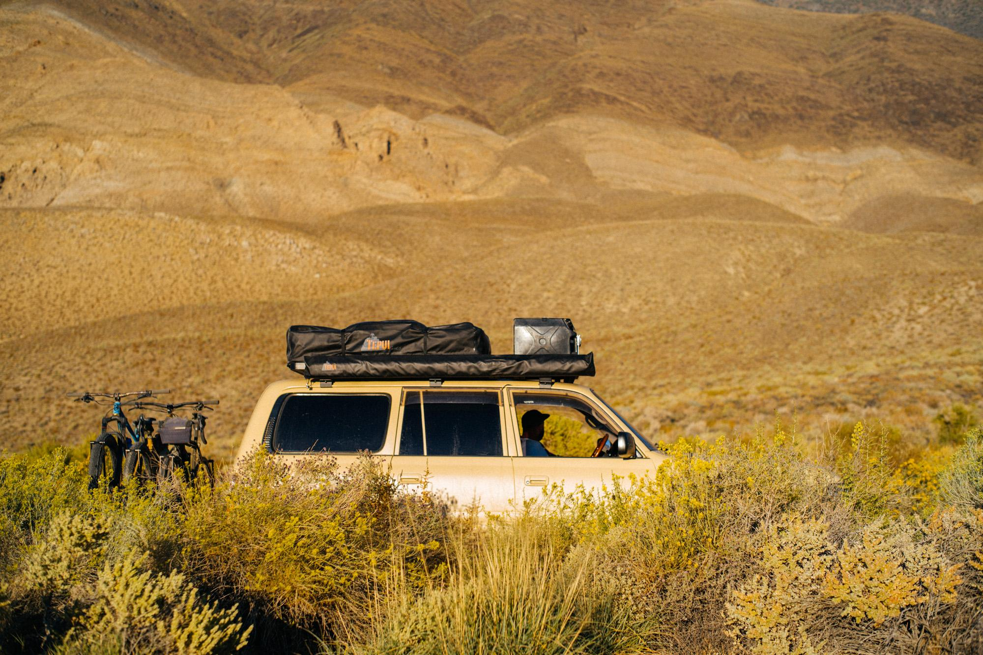 Desert Tan