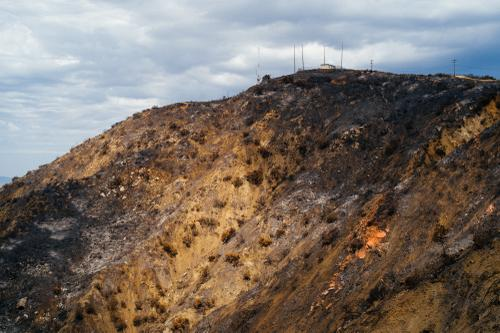 Scorched hillside.