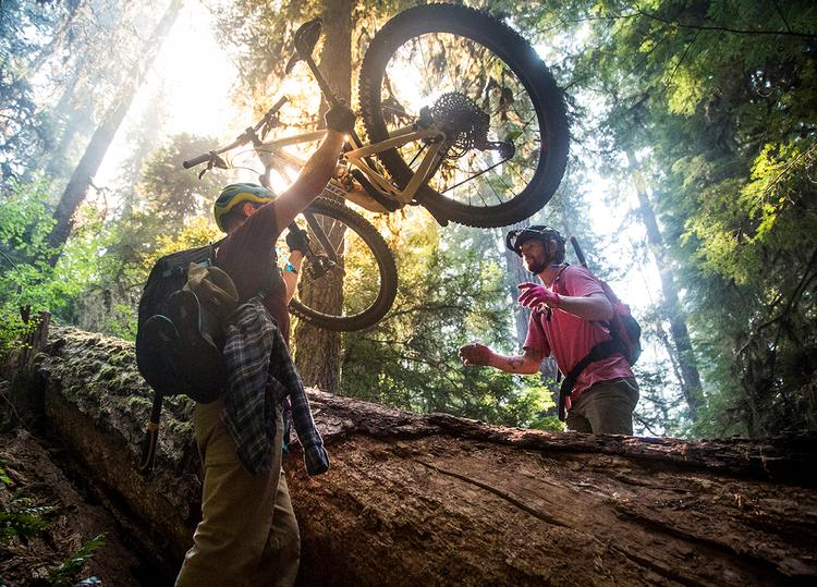 Trail Working for the Trans-Cascadia and Oregon Timber Trail – Dylan VanWeelden