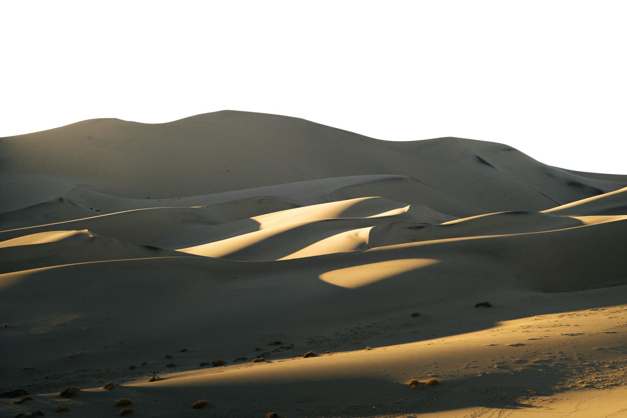 sun-kissed sand dunes