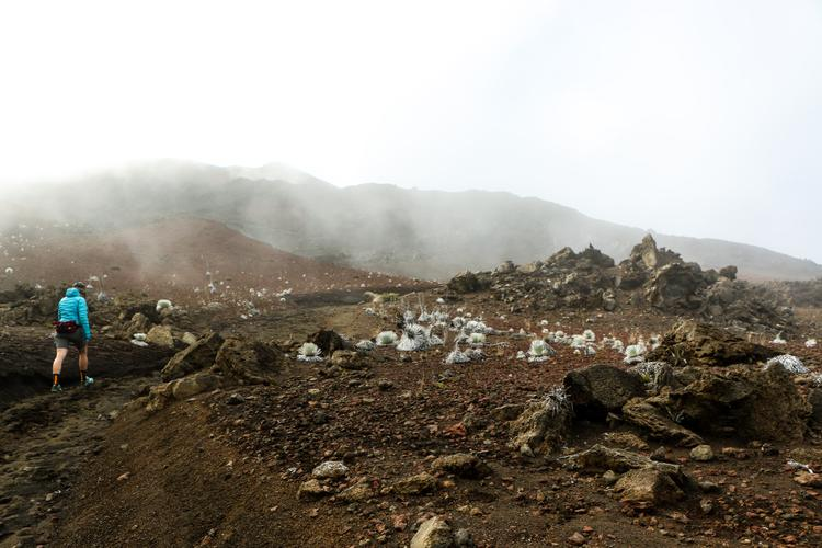 Finding Something Special in Maui's Haleakalā Crater –Morgan Taylor