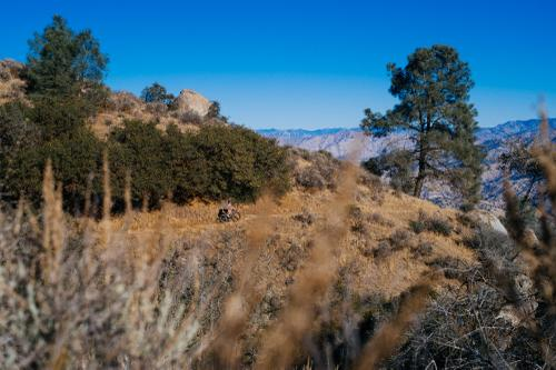 The Oak Flat Trail is a great, XC trail, with smooth, swooping turns and rocky jibs all over.
