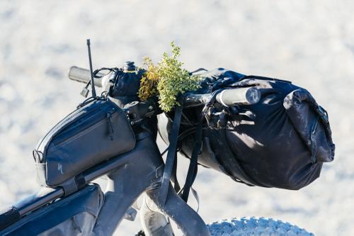 Death Valley Prospector Pack Mule: Dylan's Obsidian Fatboy
