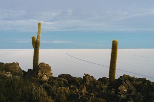 Isla De Incahuasi sunset