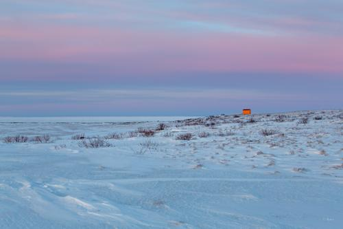 A lonely shelter cabin just north of Shaktoolik Village. Often, shelter cabins in the Arctic are painted bright colors, making them easier to find in whiteout conditions.