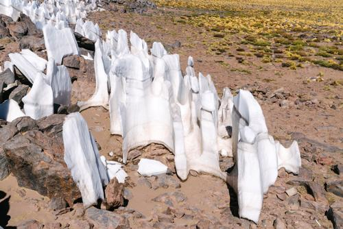 Ice sheets shaped by the wind (some of these are over 8 feet tall!)