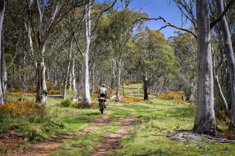Trail Angels on the Hellish Hunt 1000 –  Jorja Creighton