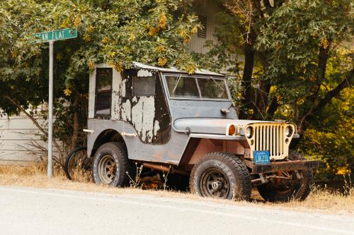 Downieville Vehicle Report