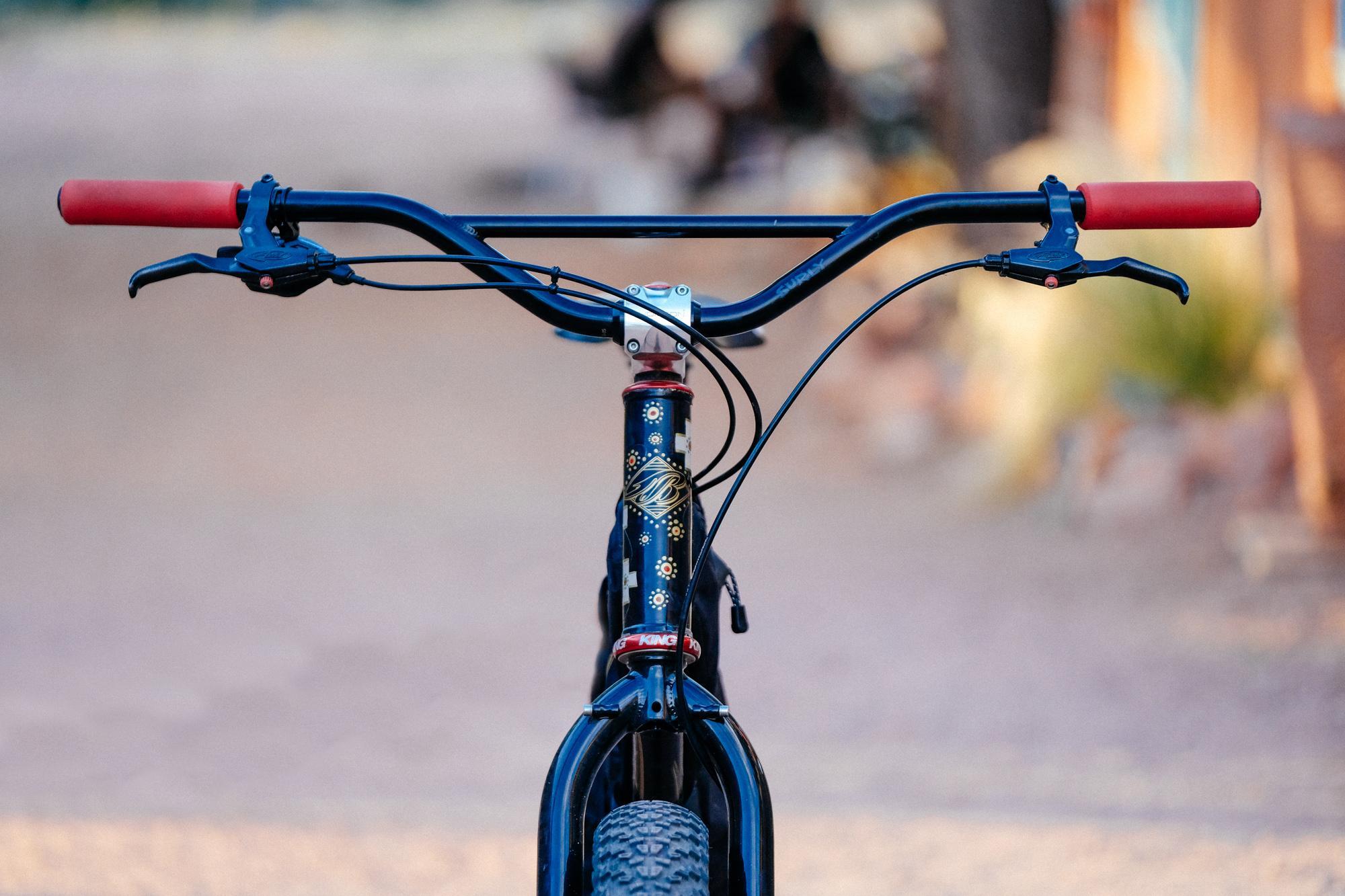Greg's Lone Wulf Blaze Bicycles Bikepacking Rig!