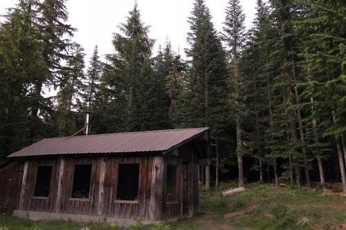 McCoy Shelter