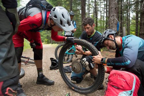 Trail woes - Photo Daniel Sharp