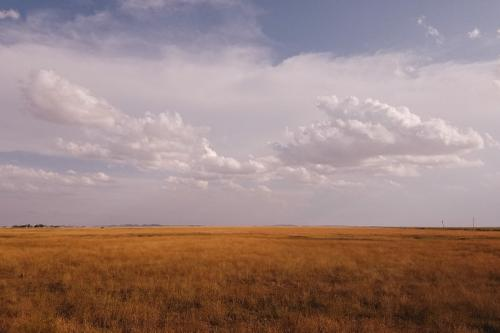 Dispatch From the Badlands