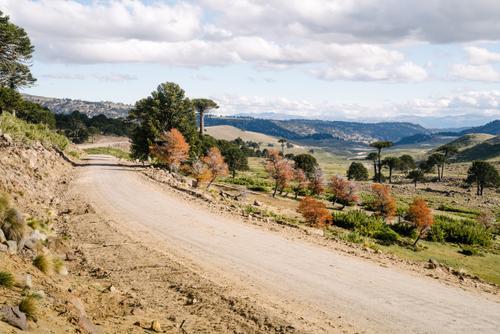 The road to Villa Pehuenia
