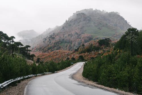 Drizzly day near the Chilean border