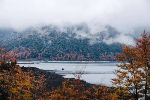 Misty day at Lago Conguillio