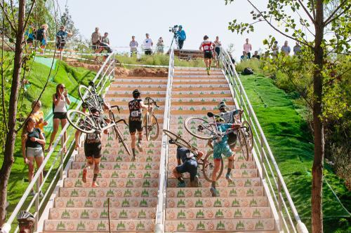 Ant running stairs