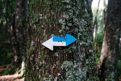 Huella Andina Trail markers