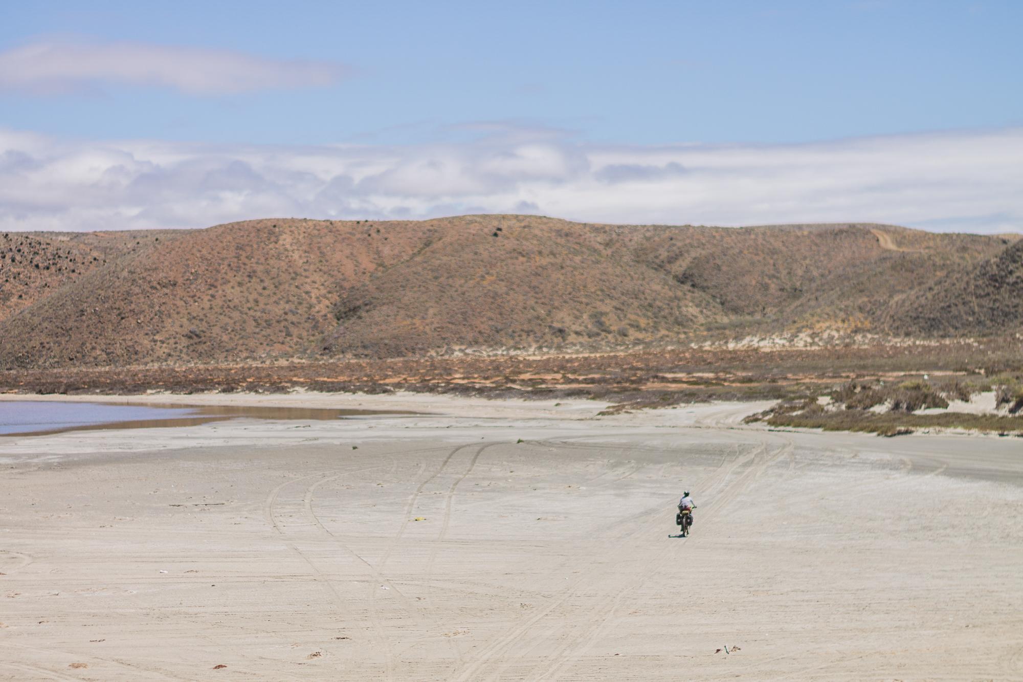 El Valle De Los Cirios-22