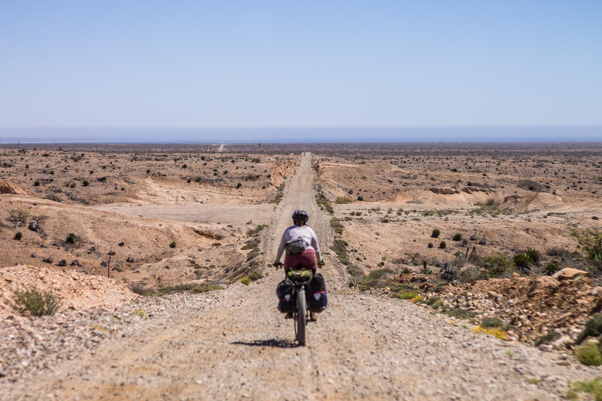 El Valle De Los Cirios-28