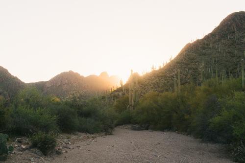 Sonoran Overnighter-9