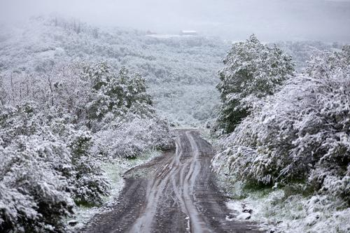 The road from Brush Mountain Lodge. (Rugile Kaladyte)