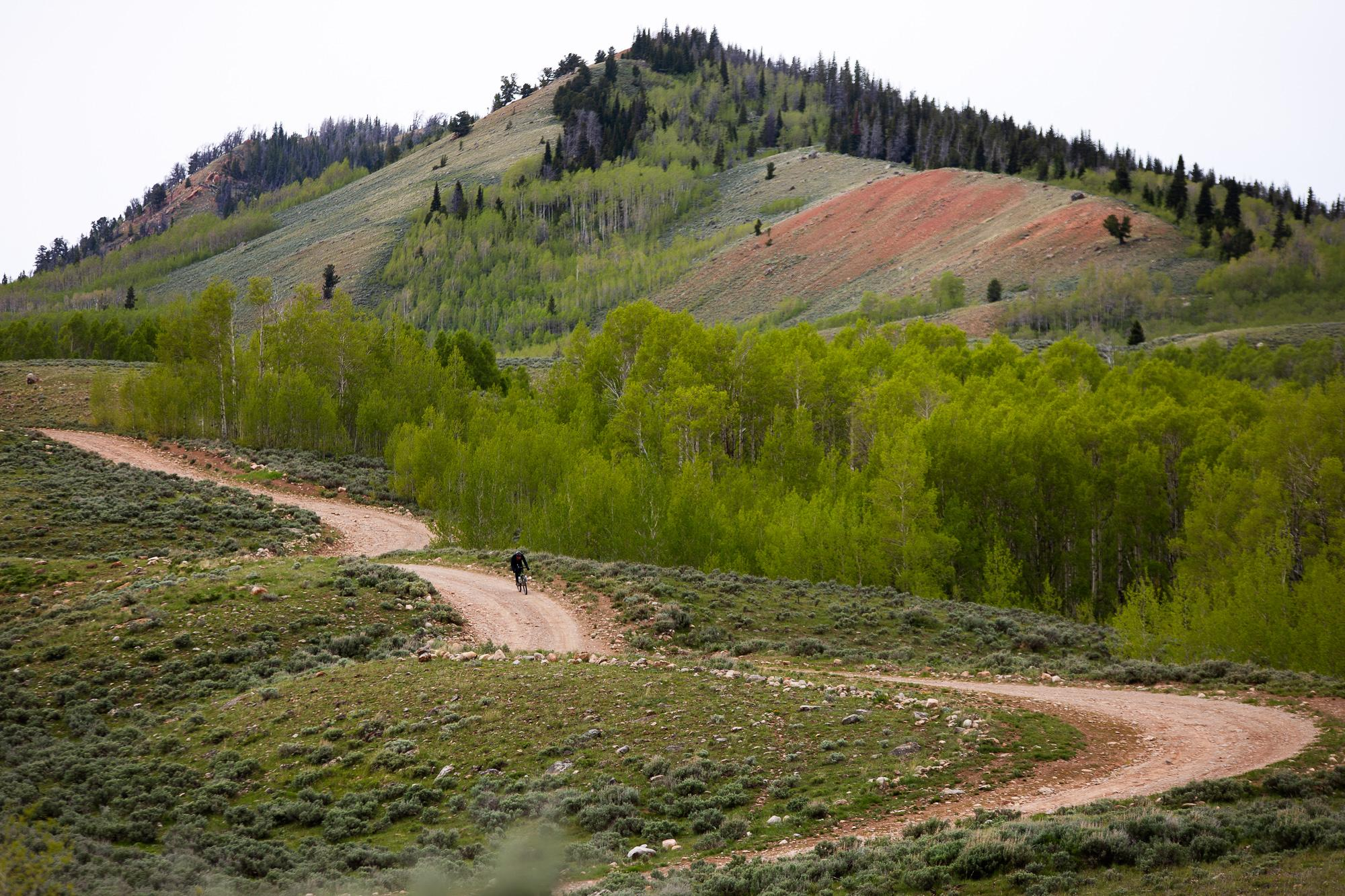 Josh Ibbett rides towards Pinedale, Wyoming. (Rugile Kaladyte)