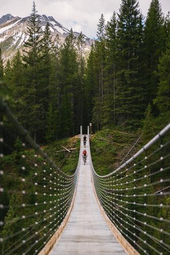 Suspension Bridge (Spencer Harding)
