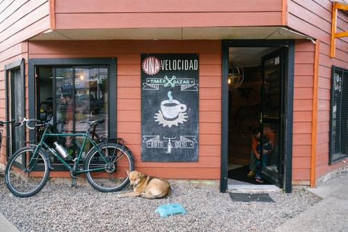 Probably the best bike shop in Patagonia