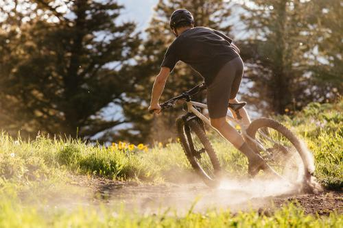 Sklar Bikes Sweet Spot 29er