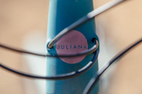 The Juliana Joplin CC 29er