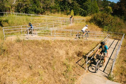 Mt Tam Bikes Camp-17