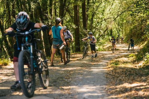 Mt Tam Bikes Camp-20