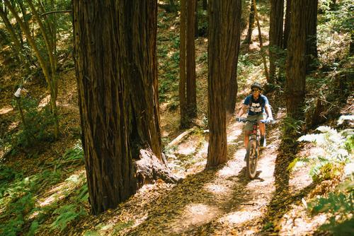 Mt Tam Bikes Camp-28