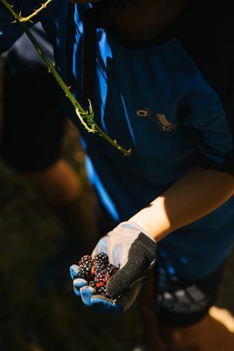 Mt Tam Bikes Camp-39