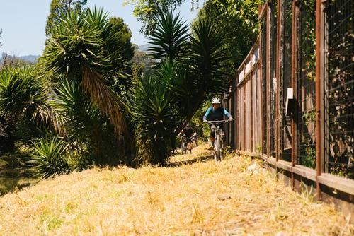 Mt Tam Bikes Camp-41
