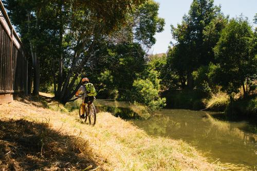 Mt Tam Bikes Camp-42