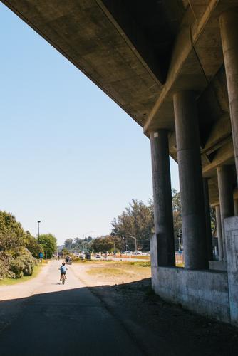 Mt Tam Bikes Camp-48