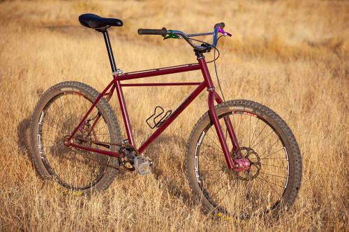 Jeremiah's Falconer Champion Tribute Bike