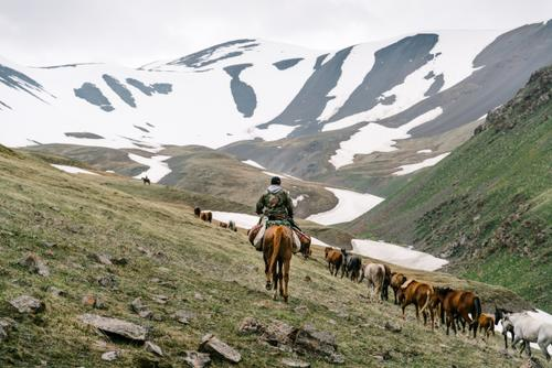Taking their animals over the pass
