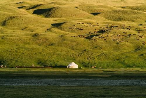Yurt glow