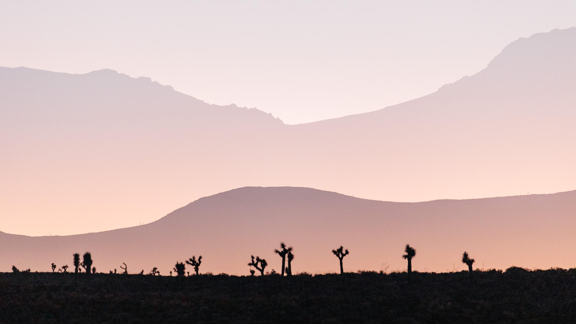 Mojave In