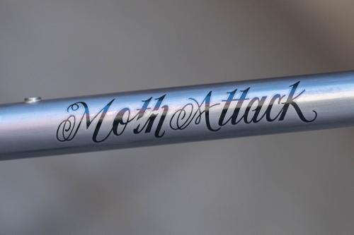 Moth Attack-10