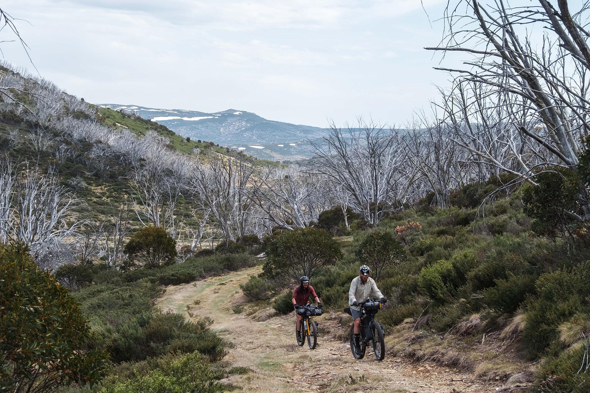 The Kosciuszko Alpine Classic: A Bikepacking Trip Before the Bush Fires
