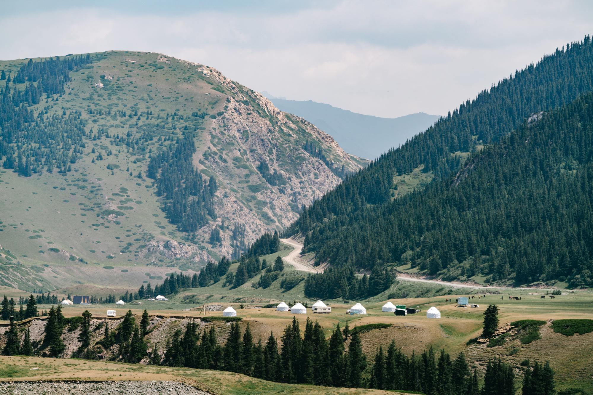 Yurt camps
