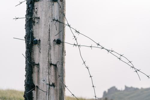 Signs of an old Soviet-era border fence