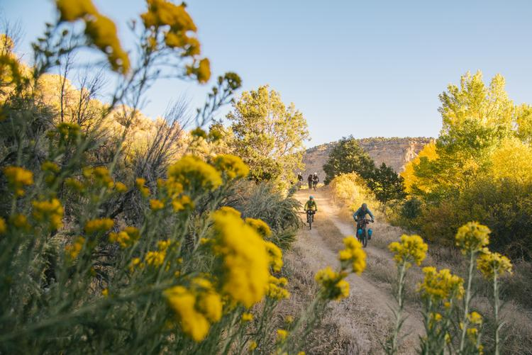 Bikepacking Among the Ancients in the Ute Mountain Tribal Park