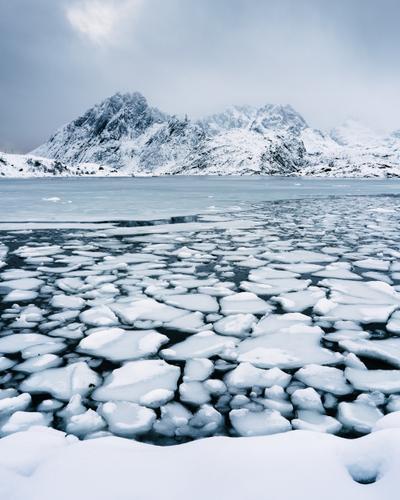 Iceberg fjord