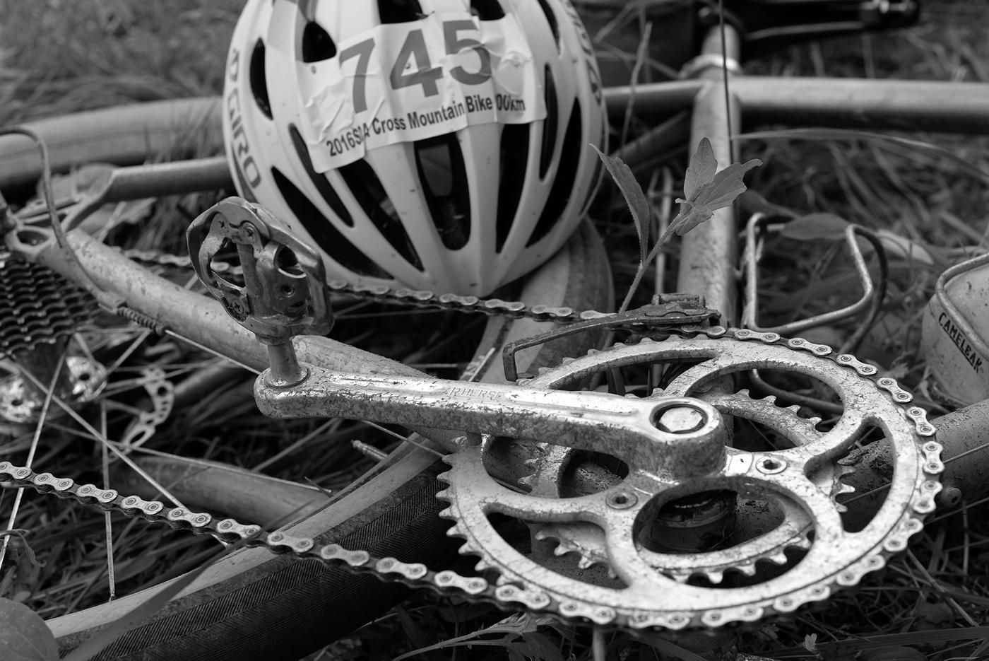 Fear Not: Rene Herse Chainrings are 12 Speed Compatible